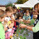 200 Kinder beim Tag der Landjugend in Emstal