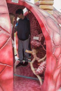 Exkursion nach Treuenbrietzen zum Tag der offenen Tür in der Lungenklinik